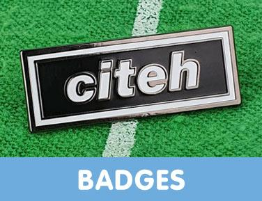 Manchester City pin badges